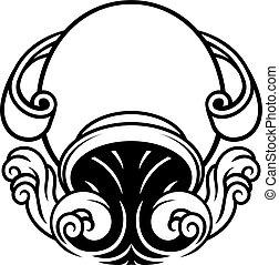 astrologie, tierkreis, wassermann, horoskop- zeichen