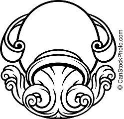 astrologie, zodiaque, verseau, signe