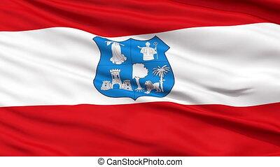 Asunction City Close Up Waving Flag