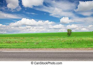 aszfalt út, zöld fű, mező, és, ég, noha, elhomályosul