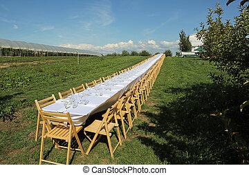 asztal, kívül, hosszú
