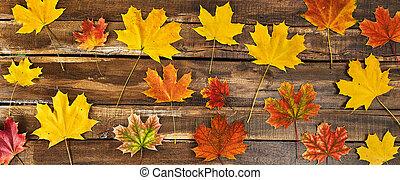 asztal, zöld, ősz, fából való, háttér