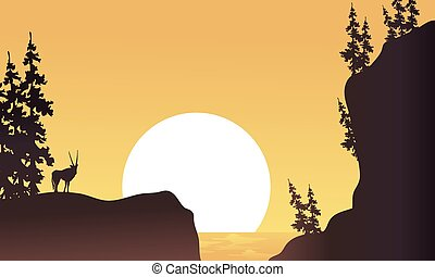 At afternoon antelope silhouette beatiful landscape