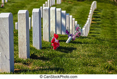 at arlington cemetary - Graves in Arlington Cemetery in...