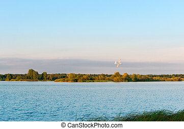 at dawn white aircraft, small aircraft over the lake