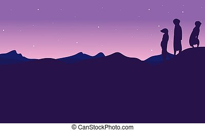 At night meerkat landscape silhouette
