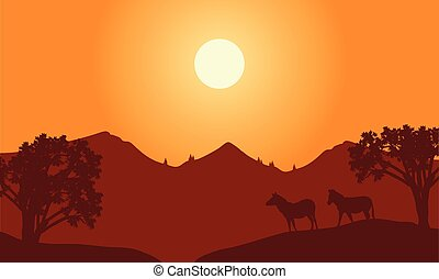 At sunset scenery with zebra silhouette