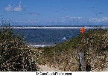 At the North Sea Coast - Dunes and beach at the North Sea...