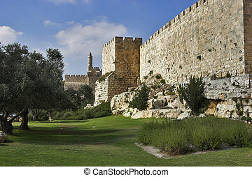 A green lawn and trees at a wall of Jerusalem near David's tower