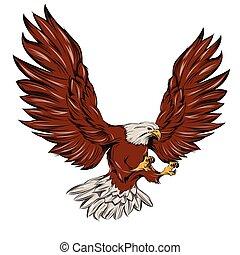 aterrizaje, solo, águila, durante