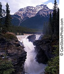 athabasca, canada., 落ちる, アルバータ
