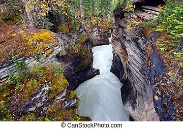 Athabasca Falls Gorge - Canada