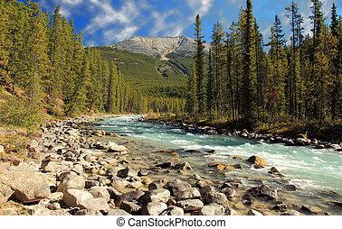 athabasca river , jasper, alberta