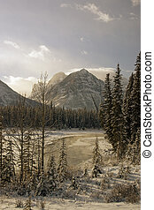 Athabasca River. - Winter shot of Athabasca River in Jasper...