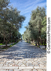 Old stone paved footpath at Filopappou hill in Athens, Greece. People walk a sunny day a cobblestone pathway under ancient Acropolis. Trees around, vertical view.