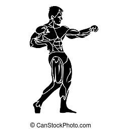 athlète, fitness, musculation, icône