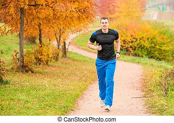 athlétique, sentier, courant, parc, homme