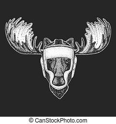 Athletic animal Moose, elk Boxing champion. Print for t-shirt, emblem, logo. Martial arts. Vector illustration with fighter. Sport competition.