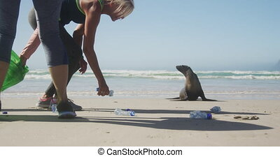 Athletic women cleaning at the beach - Side view mid section...