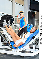 athletic - Young sporty women doing exercises in the gym ...