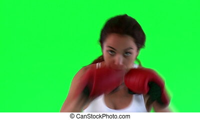 Athletic young woman boxing over green background