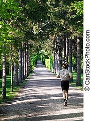 athletische, rennender , park, mann