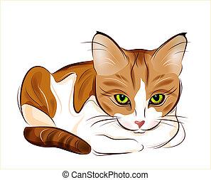 atigrado, gato jengibre, dibujado, retrato, mano