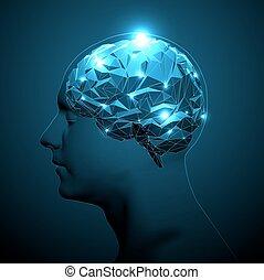 ativo, brain., cabeça, silueta, human