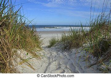 atlanti-, tengerpart