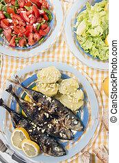 Atlantic horse mackerel meal