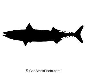 Atlantic Mackerel silhouette