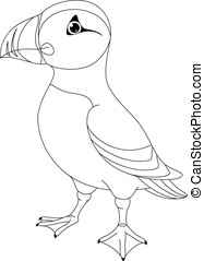 Atlantic Puffin Coloring Page - Sea bird atlantic puffin on...