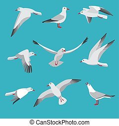 Atlantic seagull in different action poses. Cartoon flying...