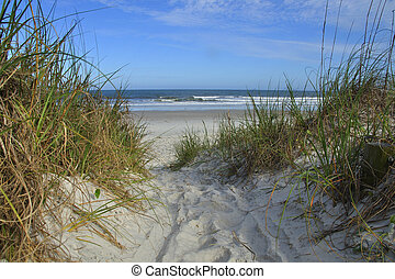 Atlantic shore - Sandy trail through grass covered dunes to ...
