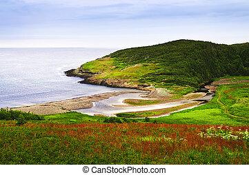 atlantický, newfoundland, břeh