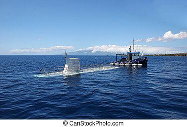 Atlantis IX Submarine Adventure Maui ; 04/24/2010 ; Lahaina Maui Hawaii USA