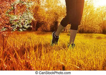 atleta, corredor, pies, corriente, en, pasto o césped, primer plano, en, shoe., mujer, condición física, salida del sol, empujoncito, entrenamiento, salud, concept.