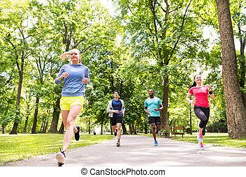 atletas, park., executando, grupo, ensolarado, verde, jovem