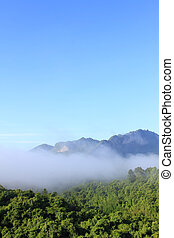 Atmosphere morning on mountain , Thailand