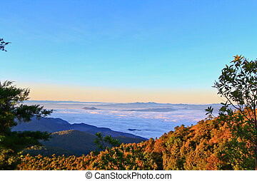 Atmosphere on mountain ,Doi inthanon in Chiang Mai thailand