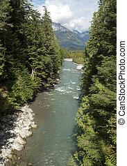 Atnarko River by Bella Coola, British Columbia, Canada