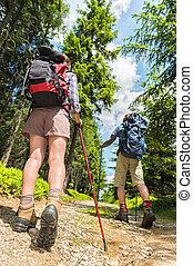 atrás de, polos, turistas, trekking
