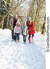 através, andar, bosque, família, nevado