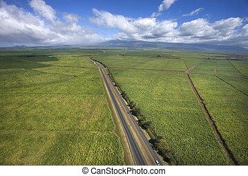 através, estrada, farmland.