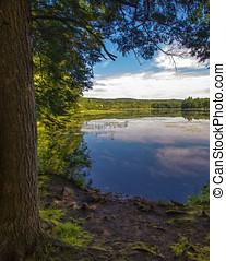através, lago, árvores