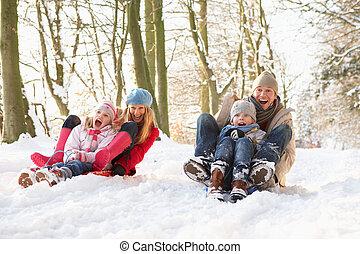 através, sledging, bosque, família, nevado