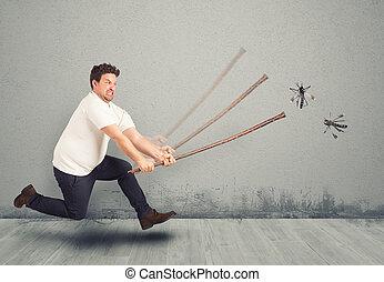 attacco, zanzare
