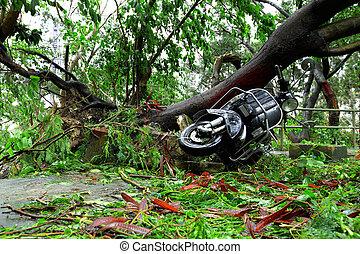 attaque, après, typhon, demaged
