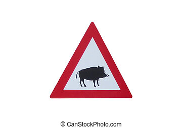 Attention - Boar - traffic sign in front of white background