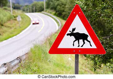 attention elks crossing